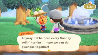 Daisy Mae Selling Turnips
